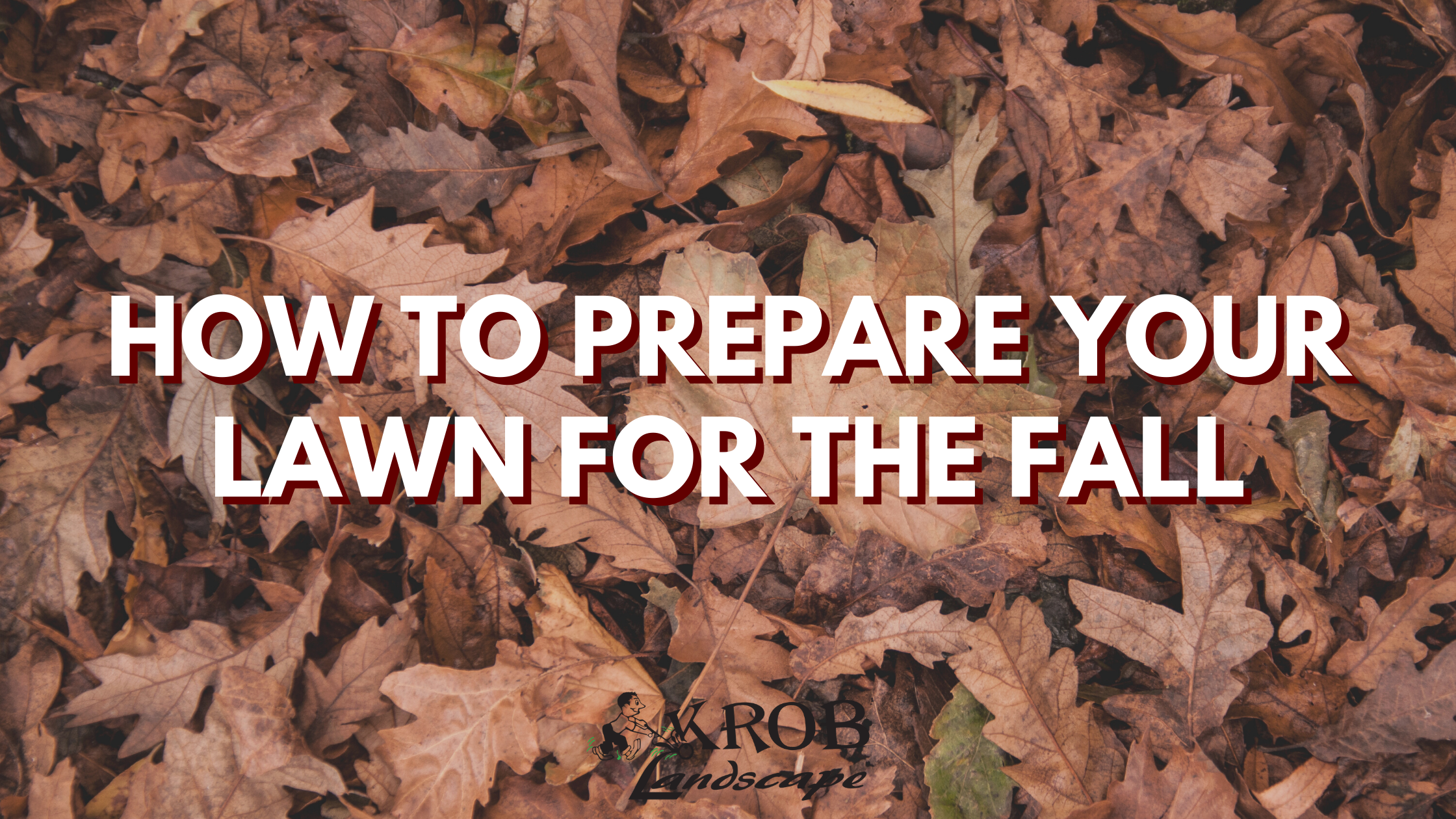 How To Prepare Your Lawn For The Fall.png
